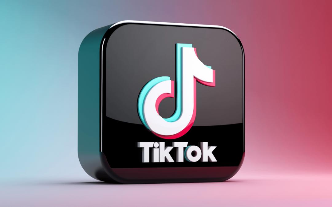 Wat zijn de TikTok Trends van het moment? [infographic]